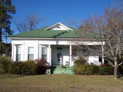Lake Blackshear, Cordele, Warwick, Arabi, Ashburn, Rebecca, Sycamore Single Family Home For Sale: 605 Hudson Ave