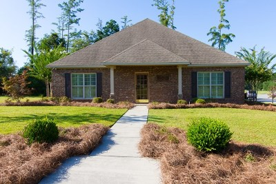 Brookfield, Chula, Tifton, Irwinville, Omega, Poulan, Sycamore, Sumner, Ty Ty, Ashburn, Rebecca Single Family Home For Sale: 203 Turtle Cove Lane