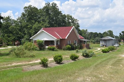 Poulan, Sumner, Warwick, Sylvester, Ashburn, Sycamore, Rebecca Single Family Home For Sale: 491 Ga Hwy 32 East