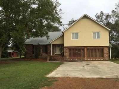 Brookfield, Chula, Tifton, Irwinville, Omega, Poulan, Sycamore, Sumner, Ty Ty, Ashburn, Rebecca Single Family Home For Sale: 7199 Us Hwy 319 N