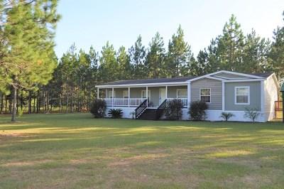 Ocilla, Irwinville, Chula, Wray , Abbeville, Fitzgerald, Mystic, Ashburn, Sycamore, Rebecca Single Family Home For Sale: 184 Silas Coleman Road