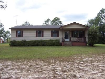 Ocilla, Irwinville, Chula, Wray , Abbeville, Fitzgerald, Mystic, Ashburn, Sycamore, Rebecca Single Family Home For Sale: 45 Jeff Ave