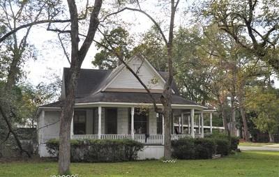 Ocilla, Irwinville, Chula, Wray , Abbeville, Fitzgerald, Mystic, Ashburn, Sycamore, Rebecca Single Family Home For Sale: 701 S Lee Street
