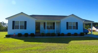 Ocilla, Irwinville, Chula, Wray , Abbeville, Fitzgerald, Mystic, Ashburn, Sycamore, Rebecca Single Family Home For Sale: 248 Burnside Rd.