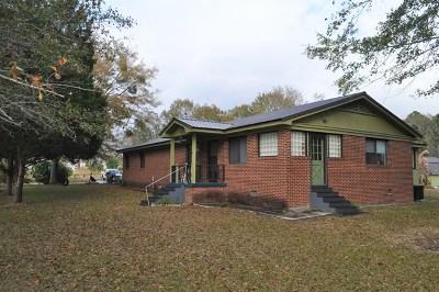 Ocilla, Irwinville, Chula, Wray , Abbeville, Fitzgerald, Mystic, Ashburn, Sycamore, Rebecca Single Family Home For Sale: 275 Rhine Road