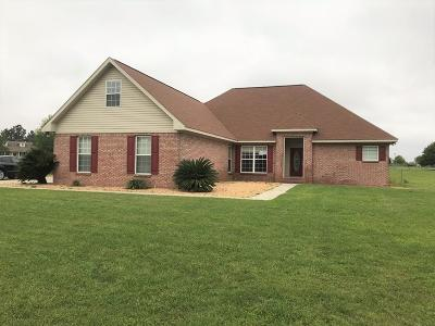 Brookfield, Chula, Tifton, Irwinville, Omega, Poulan, Sycamore, Sumner, Ty Ty, Ashburn, Rebecca Single Family Home For Sale: 104 Vanceville County Line Road