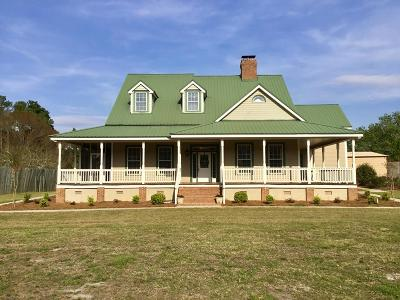 Ocilla, Irwinville, Chula, Wray , Abbeville, Fitzgerald, Mystic, Ashburn, Sycamore, Rebecca Single Family Home For Sale: 517 Waterloo/Rebecca Road