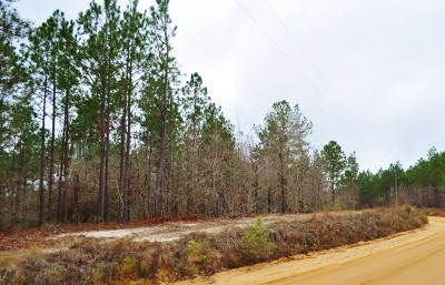 Fitzgerald, Tifton, Ashburn, Ocilla, Albany, Baconton, Lenox, Omega, Abbeville, Alapaha, Cordele, Oakfield, Ray City, Norman Park, Sparks, Chula, Vienna, Arabi, Cobb, Rochelle Residential Lots & Land For Sale: McCrimmon Road