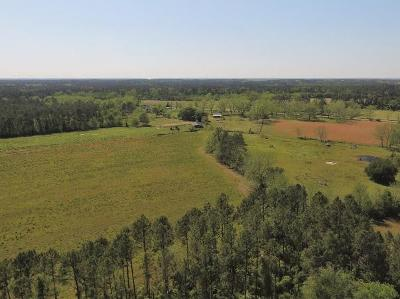 Fitzgerald, Tifton, Ashburn, Ocilla, Albany, Baconton, Lenox, Omega, Abbeville, Alapaha, Cordele, Oakfield, Ray City, Norman Park, Sparks, Chula, Vienna, Arabi, Cobb, Rochelle Residential Lots & Land For Sale: 2074 Old Ocilla Road
