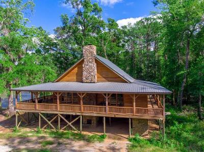 Ocilla, Irwinville, Chula, Wray , Abbeville, Fitzgerald, Mystic, Ashburn, Sycamore, Rebecca Single Family Home For Sale: 228 River Rd