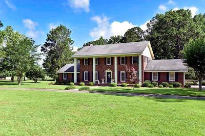 Poulan, Sumner, Warwick, Sylvester, Ashburn, Sycamore, Rebecca Single Family Home For Sale: 307 Whiddon Mill Road