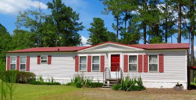 Ocilla, Irwinville, Chula, Wray , Abbeville, Fitzgerald, Mystic, Ashburn, Sycamore, Rebecca Single Family Home For Sale: 227 Flint Rd.