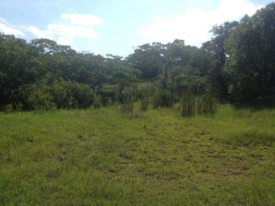Residential Lots & Land For Sale: Rusty Nail Road