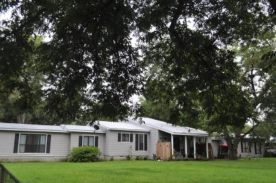 Ocilla, Irwinville, Chula, Wray , Abbeville, Fitzgerald, Mystic, Ashburn, Sycamore, Rebecca Single Family Home For Sale: 482 Benjamin Hill Drive
