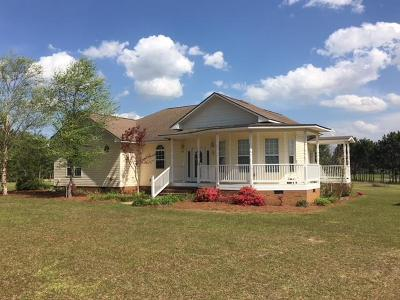 Brookfield, Chula, Tifton, Irwinville, Omega, Poulan, Sycamore, Sumner, Ty Ty, Ashburn, Rebecca Single Family Home For Sale: 155 Old Ty Ty Road