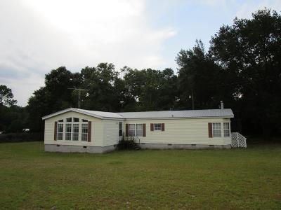 Poulan, Sumner, Warwick, Sylvester, Ashburn, Sycamore, Rebecca Single Family Home For Sale: 155 Mason Dixon Line