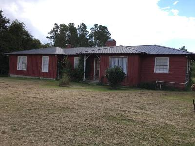 Ocilla, Irwinville, Chula, Wray , Abbeville, Fitzgerald, Mystic, Ashburn, Sycamore, Rebecca Single Family Home For Sale: 173 E Hwy 32 (Douglas Hwy)