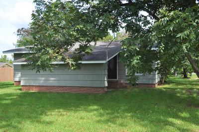 Ocilla, Irwinville, Chula, Wray , Abbeville, Fitzgerald, Mystic, Ashburn, Sycamore, Rebecca Single Family Home For Sale: 151 Ten Mile Road