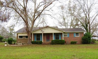 Ocilla, Irwinville, Chula, Wray , Abbeville, Fitzgerald, Mystic, Ashburn, Sycamore, Rebecca Single Family Home For Sale: 855 Walker Road