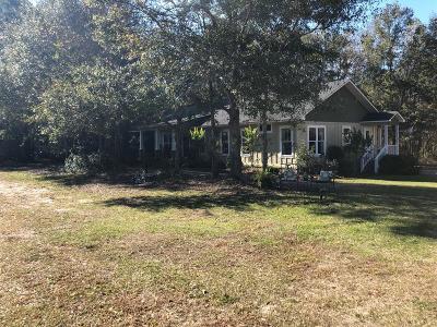 Ocilla, Irwinville, Chula, Wray , Abbeville, Fitzgerald, Mystic, Ashburn, Sycamore, Rebecca Single Family Home For Sale: 692 Ten Mile Rd