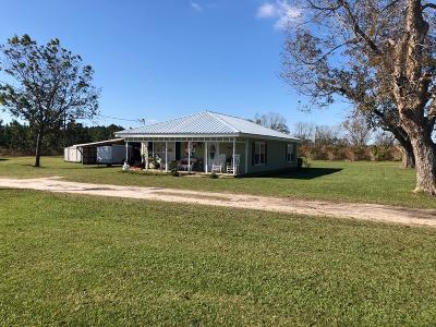 Ocilla, Irwinville, Chula, Wray , Abbeville, Fitzgerald, Mystic, Ashburn, Sycamore, Rebecca Single Family Home For Sale: 668 Ten Mile Rd