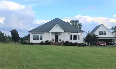 Ocilla, Irwinville, Chula, Wray , Abbeville, Fitzgerald, Mystic, Ashburn, Sycamore, Rebecca Single Family Home For Sale: 623 Ten Mile Rd