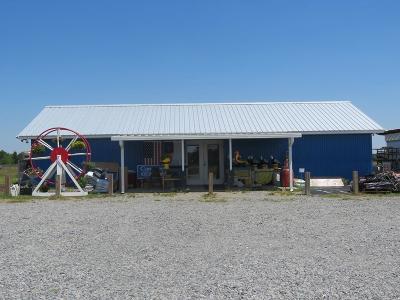 Ocilla, Irwinville, Chula, Wray , Abbeville, Fitzgerald, Mystic, Ashburn, Sycamore, Rebecca Single Family Home For Sale: 395 Redwood Road