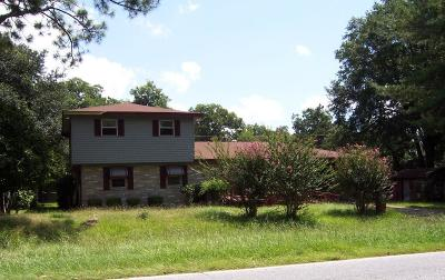 Lake Blackshear, Cordele, Warwick, Arabi, Ashburn, Rebecca, Sycamore Single Family Home For Sale: 2003 S Joe Wright Drive