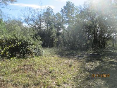 Residential Lots & Land For Sale: 4183 Beaver Run Rd