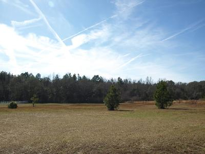 Residential Lots & Land For Sale: 30 N Will Drive