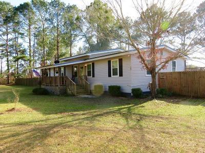 Ocilla, Irwinville, Chula, Wray , Abbeville, Fitzgerald, Mystic, Ashburn, Sycamore, Rebecca Single Family Home For Sale: 165 Turkey Creek Lane