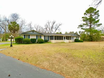 Ocilla, Irwinville, Chula, Wray , Abbeville, Fitzgerald, Mystic, Ashburn, Sycamore, Rebecca Single Family Home For Sale: 187 El Harris