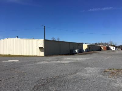 Commercial For Sale: 398 Fitzgerald Highway