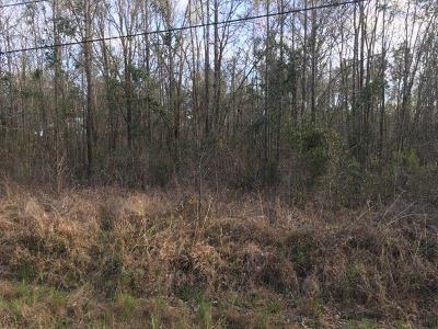 Residential Lots & Land For Sale: 311 Groveland Drive