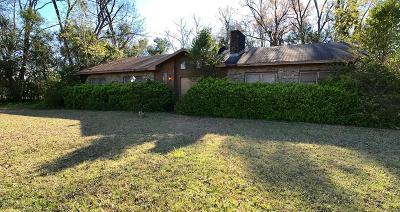 Ocilla, Irwinville, Chula, Wray , Abbeville, Fitzgerald, Mystic, Ashburn, Sycamore, Rebecca Single Family Home For Sale: 189 Van Deman Ct