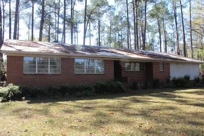 Brookfield, Chula, Tifton, Irwinville, Omega, Poulan, Sycamore, Sumner, Ty Ty, Ashburn, Rebecca Single Family Home For Sale: 292 Mt. Olive Church Rd