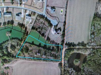 Residential Lots & Land For Sale: Lot 17 Duck Drive