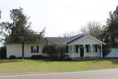 Brookfield, Chula, Tifton, Irwinville, Omega, Poulan, Sycamore, Sumner, Ty Ty, Ashburn, Rebecca Single Family Home For Sale: 705 William Gibbs Road