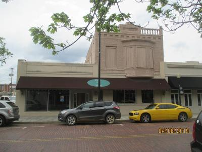 Commercial For Sale: 120 E Pine Street
