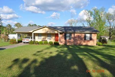 Ocilla, Irwinville, Chula, Wray , Abbeville, Fitzgerald, Mystic, Ashburn, Sycamore, Rebecca Single Family Home For Sale: 131 Carol Circle