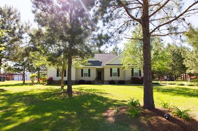 Brookfield, Chula, Tifton, Irwinville, Omega, Poulan, Sycamore, Sumner, Ty Ty, Ashburn, Rebecca Single Family Home For Sale: 127 Elizabeth Dr