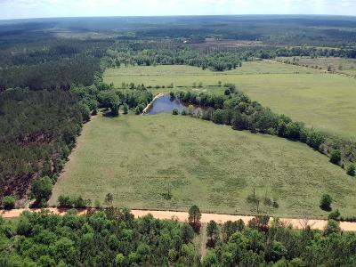 Residential Lots & Land For Sale: Morning Glory