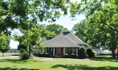 Ocilla, Irwinville, Chula, Wray , Abbeville, Fitzgerald, Mystic, Ashburn, Sycamore, Rebecca Single Family Home For Sale: 494 Alapaha Hwy