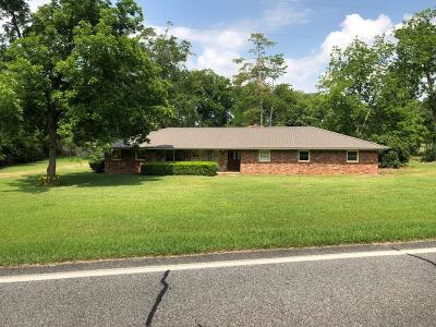 Single Family Home For Sale: 573 Alapaha Hwy