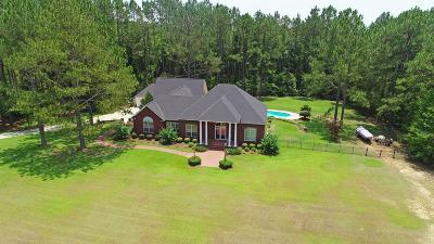Brookfield, Chula, Tifton, Irwinville, Omega, Poulan, Sycamore, Sumner, Ty Ty, Ashburn, Rebecca Single Family Home For Sale: 2018 Ferry Lake Rd.