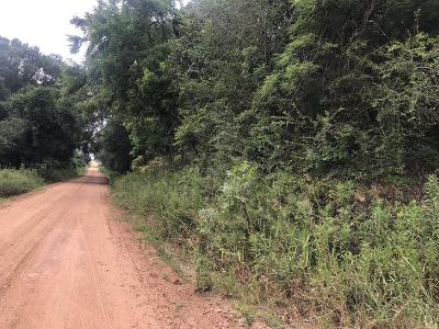 Residential Lots & Land For Sale: Brady Road