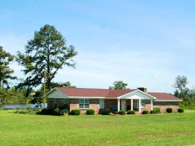 Brookfield, Chula, Tifton, Irwinville, Omega, Poulan, Sycamore, Sumner, Ty Ty, Ashburn, Rebecca Single Family Home For Sale: 9580 Ga Hwy 159
