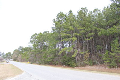 Berrien County Residential Lots & Land For Sale: 1.8675 Acres On Anderson Rd