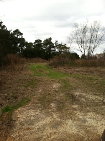 Berrien County, Lanier County, Lowndes County Residential Lots & Land For Sale: Peters Road