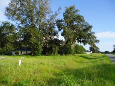 Valdosta Residential Lots & Land For Sale: 4841 Johnson Rd